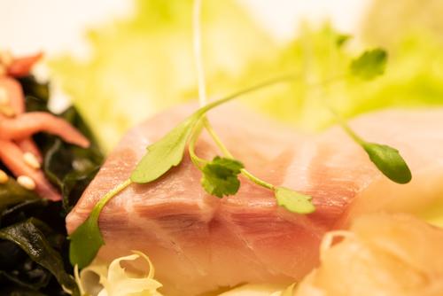 oryza sushi sashimi bar