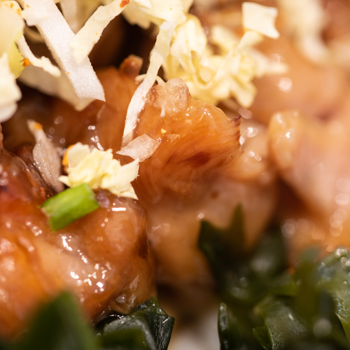 oryza sushi soupe udon poulet